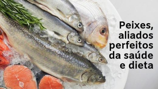 Peixes aliados perfeitos da saude e dieta